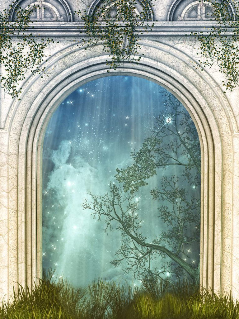 Magic door in the forest with stars & Why your clients will never understand you until they walk through ...